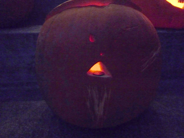 pumpkin, Jay's