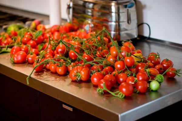 Tomato Harvest 2011